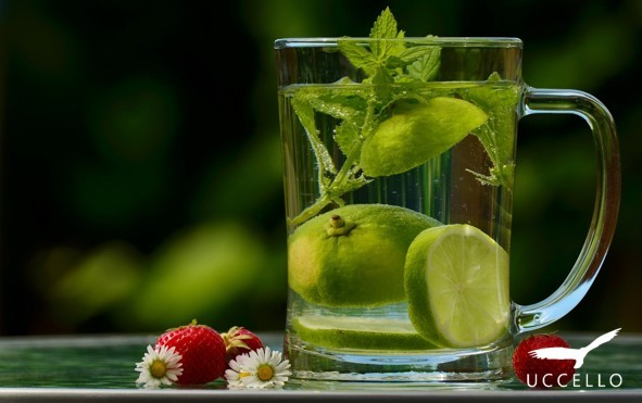 Glass of water infused with mint and lime